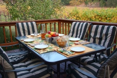 calistoga-vineyard-vacation-rental-11