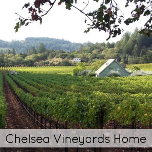 calistoga vacation rental