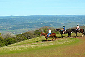 napa valley wine country activities